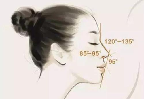 标准美鼻都有这几个特征,你知道吗?