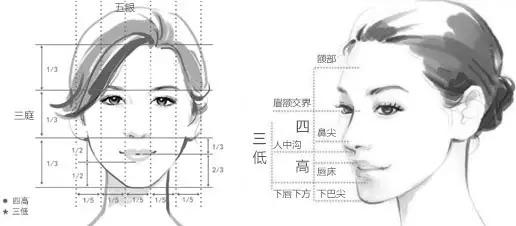 隆鼻前需要知道隆鼻的区别再决定做哪种
